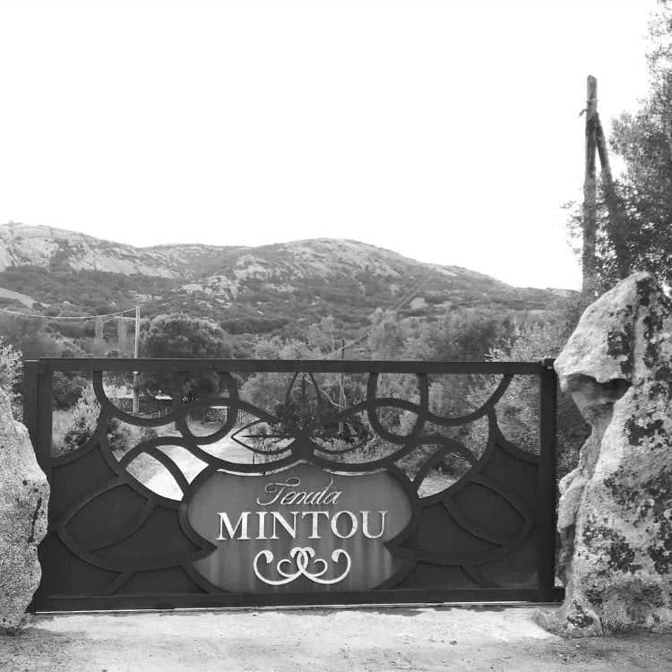 mirto-tenuta-mintou-gallery-7